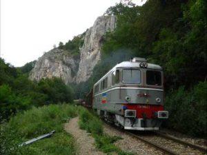 trenuri-timisoara