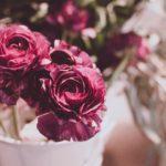 5 sentimente pe care le transmiti atunci cand oferi buchete de trandafiri colorate