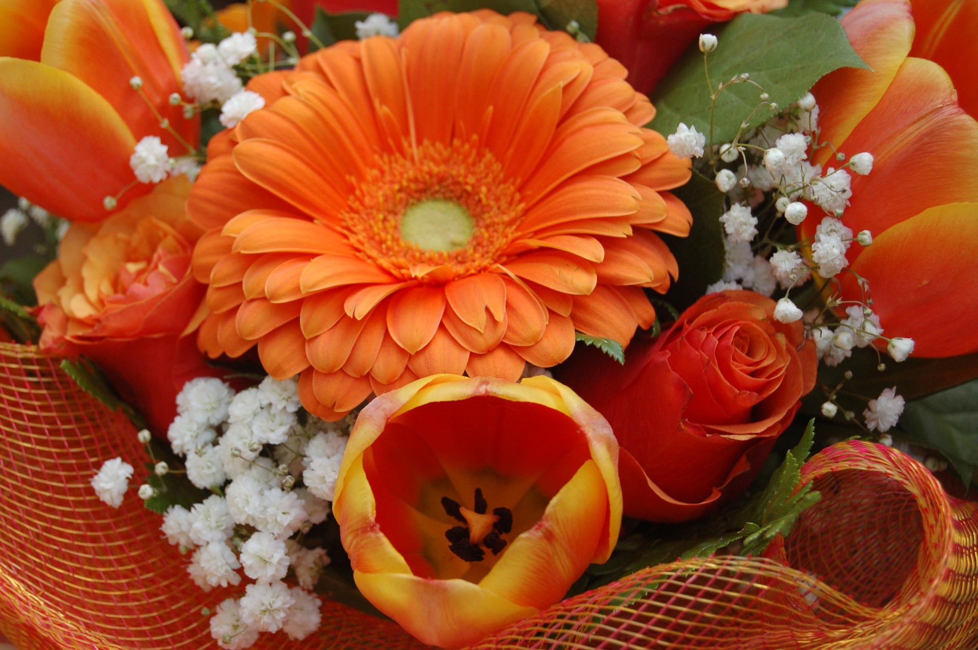 Cum alegi cel mai bun serviciu de livrare flori in Bucuresti oferit de o florarie online